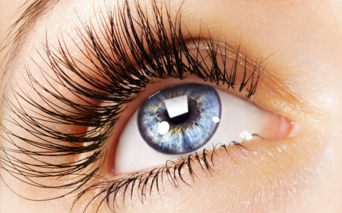 LOOKING AFTER YOUR BROWS & LASHES AT HOME